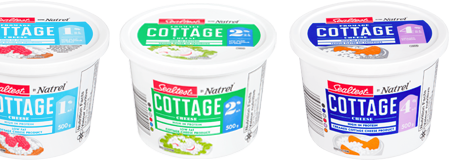 Cottage Cheese Teaser